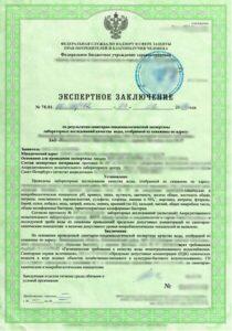 ekspertnye-zaklyucheniya-doc-1