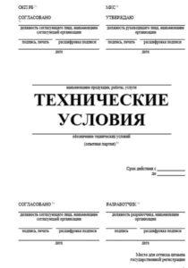 tehnicheskie-usloviya-doc-1
