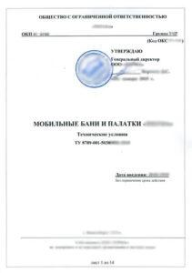 tehnicheskie-usloviya-doc-2